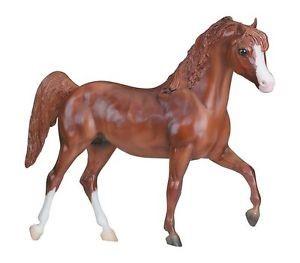 horse donation barrington il